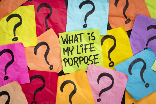 What's Your Life Purpose?